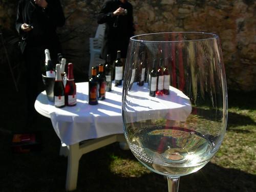 Tast al Vins&Blogs