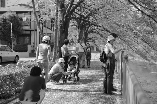 町田樹 画像47