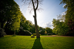 Green park (Hkan Dahlstrm) Tags: park shadow tree verde green grass groen sweden schweden vert sverige grn helsingborg grn sude svezia ramlsa brunnspark skanelan