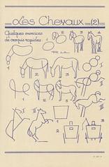 les animaux 57