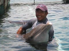 Ricardo training dolphin (ABC Dolphin Trainer Academy) Tags: dolphin trainer trainingsession dolphindiscovery animaltraining dolphintrainer positivereinforcementtraining entrenamientorefuerzopositiva entrenadordedelfines