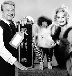 Apparently its an urban myth that the cast and crew barbecued Arnold the Pig after the series was cancelled.