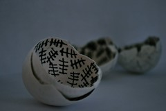 counting down the days (Sydstralia) Tags: shells egg shell down days eggs tally counting tallies