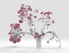 Sakura Synthesis (fpsurgeon) Tags: pink tree generative bonsai cherryblossom flowering sakura fractal recursive ambientocclusion sunflow structuresynth ruleretirement