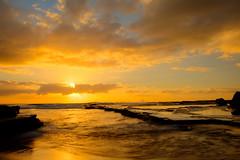 turimetta beach narrabeen sydney nsw australia