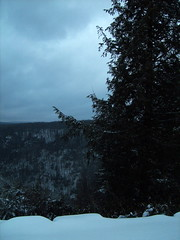 S5002549 (Force Majeure Studios) Tags: park county sky mountain black mountains west art nature water river photography virginia state acid fine canyon falls lodge valley waters gorge davis tucker blackwater allegheny canaan the darkened in tannic jameswbailey