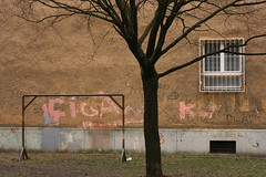 Introverted (sonofsteppe) Tags: street old winter urban house detail building tree art window stain horizontal wall architecture dark 50mm daylight exterior outdoor bare budapest nobody scene stained explore weathered grilled visual exploration thewall ilmuro scribbled wallscape sonofsteppe pusztafia zugl urbanlifeoftrees