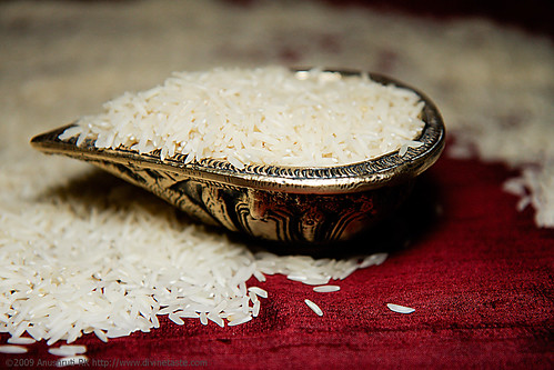 Rice and how to cook the perfect grain of rice
