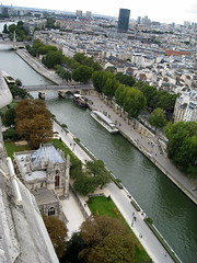 Notre Dame de Paris rooftop. () Tags: above city bridge roof vacation holiday paris rooftop church wet pool seine architecture clouds river design cathedral basilica gothic overcast landmark notredame chiesa rtw gothique eglise notredamedeparis vacanze roundtheworld notredamecathedral atop gothicarchitecture globetrotter ourlady gothicchurch houseofworship gothicstyle pontdelarcheveche pontdelatournelle  worldtraveler ourladyofparis diamondclassphotographer flickrdiamond ptdelarcheveche ptdelatournelle