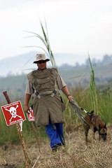 Landmine Clearing Efforts in Democratic Republ...