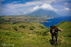 Batanes (marian1023) Tags: travel photography philippines batanes