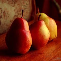 Three Pears / Fatti Tre Pere (Osvaldo_Zoom) Tags: stilllife colors fruit salute health pear pira naturamorta pera rinascimentale malusdomestica sbfgrandmaster