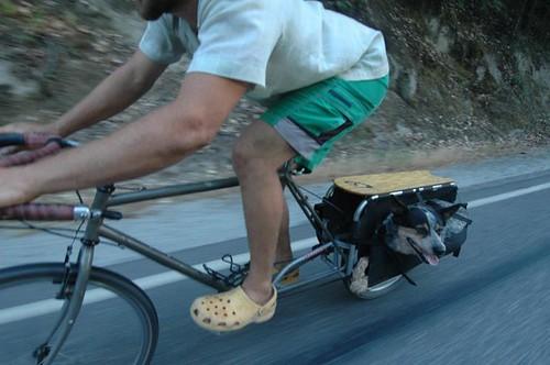 Transporter du matériel à moto ou à vélo 3455309395_d4a53903db