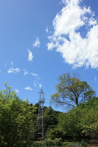 天沼新田の火の見櫓