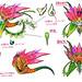 Spectrobes__Origins-Nintendo_WiiArtwork4287S0191 par gonintendo_flickr