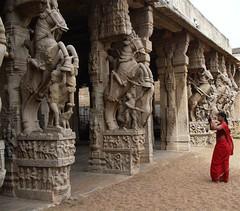 The Srirangam Horses (1) (Indianature s3) Tags: art heritage architecture temple vishnu tamil tamilnadu trichy srirangam mahavishnu chola dravidian cauvery vishnutemple tiruchirapalli ranganathaswamy indianature cauverydelta dravidiantemple dravidianheritage snonymous srirangamhorses indiasnonymous