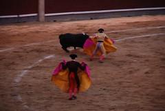 DSC_0325 (Ramon Jose Adolfo Mena Mendez) Tags: torero