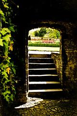 The Secret Garden (Sian Bowi) Tags: light shadow stone wales garden carmarthenshire cymru steps ivy archway gardd iorwg grisiau sirgaerfyrddin aberglasne