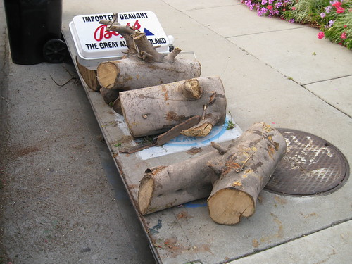 more logs on sidewalk