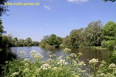 2009-05-31-082 v 1 (wm) River Thames Sonning - Caversham (Martin-James) Tags: trees summer water woods peace explore rivers 500views riverthames riverview caversham sonning cowparsley thamesview ruralengland coth explorephoto bej mywinners abigfave anawesomeshot englishrivers theperfectphotographer worldwidelandscapes natureselegantshots thamesideview