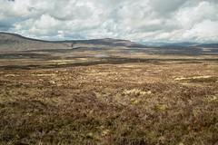 Rannoch Moor (Ipoh kia) Tags: uk nature walking landscape scotland highlands heather wilderness westhighlandway rannochmoor sigmadp1
