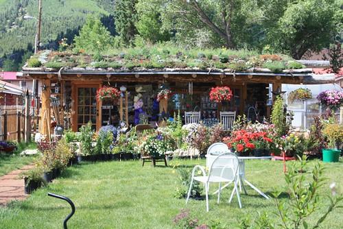 Lake City - Flower garden roof