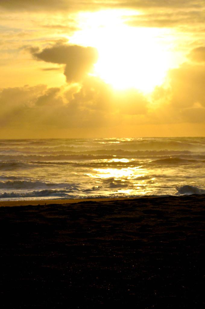 sun to sea