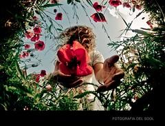 ( Delsool) Tags: flores primavera flor huelva yomisma mano campo fotografia 8mm peleng amapola canoneos400d campodeamapolas delsool sooldel maravillosolightroom maravillosoojodepez