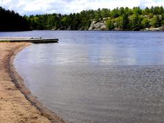down the lake (dmixo6) Tags: trees sky lake spring sunday cottagecountry muskoka dmixo6