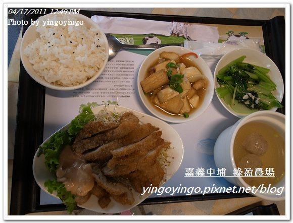 嘉義中埔_綠盈農場20110417_R0019046