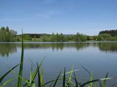 Erlauzwieseler See (Frank Hamm) Tags: see bayerischerwald erlauzwiesel