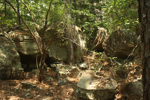 Boulders of Catahoula Formation Sandstone