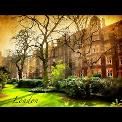 Kensington Square  ..LONDON  .. W8