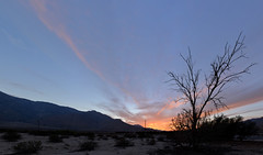 Palm Springs sunset 2014 (Gord McKenna) Tags: california ranch ca las panorama usa sun architecture modern vancouver butterfly quincy jones michael newspaper tour desert stitch furniture pano modernism martini style palm resort kip springs