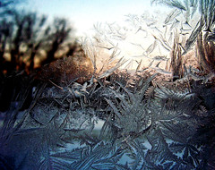 Jack Frost Left a Present (EXPLORED) (Lindsey Mae) Tags: sunset cold ice window frost windowfrost jackfrost feathered ricko