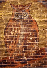 Owl Cigars (Equinox27) Tags: indiana owl cigars ghostsign goshen owlcigars