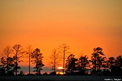 DSC_6016 (G1 Photo) Tags: sunset sun la louisiana dusk jrtc onephoto oc6 g1photo 1photooc6