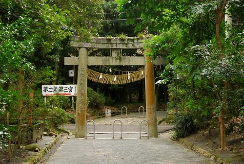 back torii