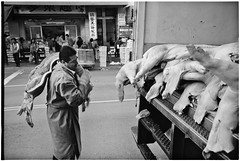 I Don't Eat That (alapan.com) Tags: sanfrancisco street leica film photography chinatown rangefinder meat pork butcher pigs diafine delivery analogue swine hog m6 disease unsanitary meatmarket leicam6 stocktonstreet filmphotography leicam6ttl filmisnotdead agoncillo aristapro50 80iso autaut leicasummicron35mmf20asph longlivefilm wwwalapancom johnagoncillo 35mmasphsummicronf20 swingflu bup0909ownpick exhibitprint believeinfilm