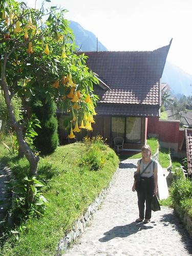 Onze bungalow in Bromo