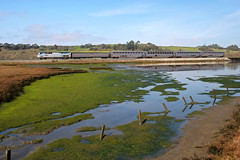Coast Starlight at Elkhorn Slough (Dave Toussaint (www.photographersnature.com)) Tags: california travel copyright usa 20d nature canon landscape photo 2006 11 amtrak pajaro genesis ge allrightsreserved coaststarlight p42 amtk p42dc photographersnaturecom davetoussaint davetoussaintcom coastsubdivision elkhownslough amtk118