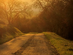 the road less traveled... () Tags: california somewhere countryroad platinumphoto aplusphoto citrit