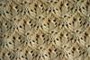 Вязание ажурных узоров спицами.  Красивый ажурный узор.  Узор - Трилистник ( shamrock pattern).