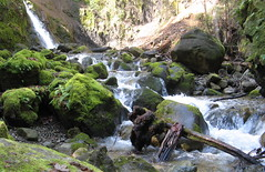 Unidentified falls (Sveadal, California, United States) Photo