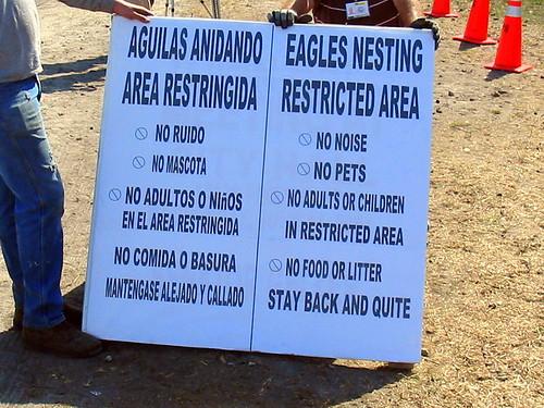 Eagle Sign 20090310