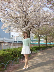 day109-101 cherry blossoms (Yumiko Misaki) Tags: white green cherry blossoms knit skirt osaka lime day109