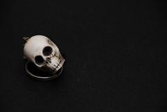 _caveira (.merchan) Tags: caveira objeto chaveiro cranio