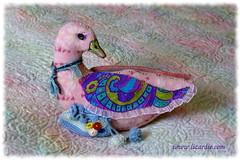 Wool Duck