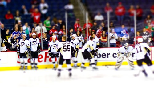Penguins Tiltshift
