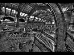 Curves and Stairs by Kev Bell (kevbell007) Tags: interior creative art structure historic hall wide london lens buildings building architecture angle kevbell kevinbell kevinbelllrps kevbellphotos england britain picture image pic flickriver dapagroupmeritaward dapagroupmeritaward1 dapagroupmeritaward2 dapagroupmeritaward3 dapagroupmeritaward4 dapagroupmeritaward5 wideangle kevbelllrps interesting jpg photo photograph parkwoodcameraclub blackandwhite